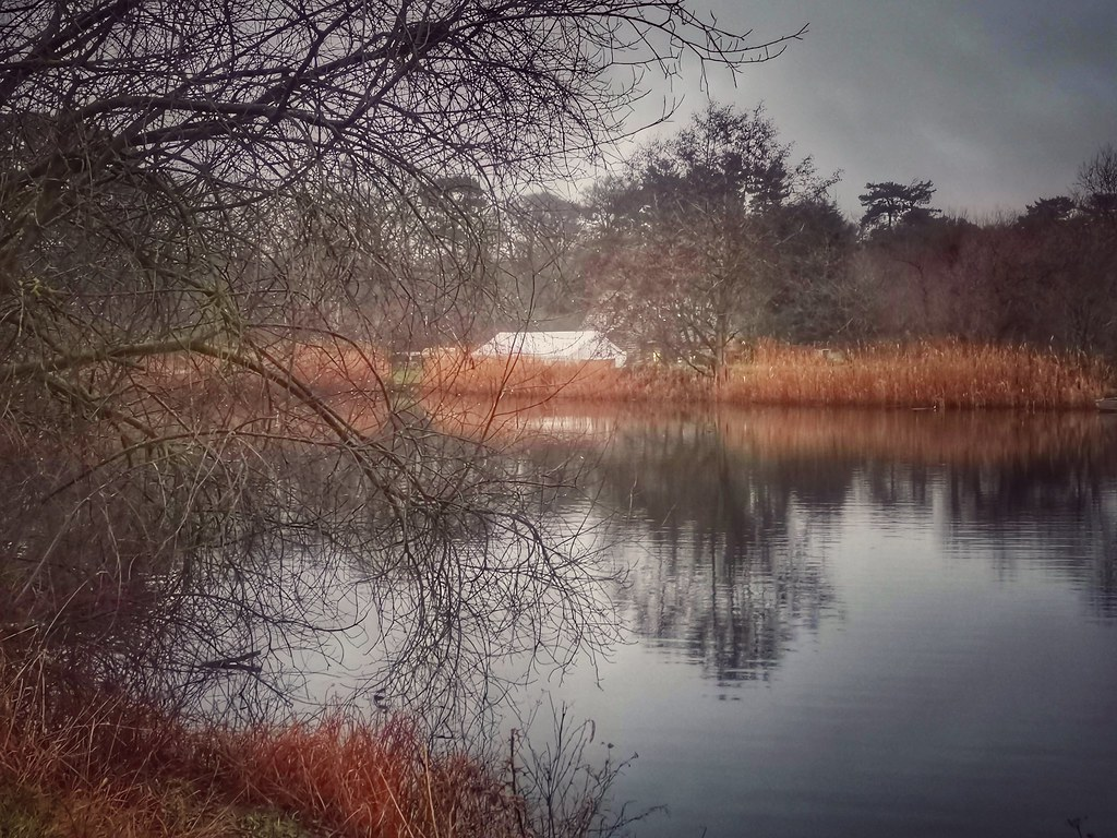 Fisherwick Lake, Whittington, England