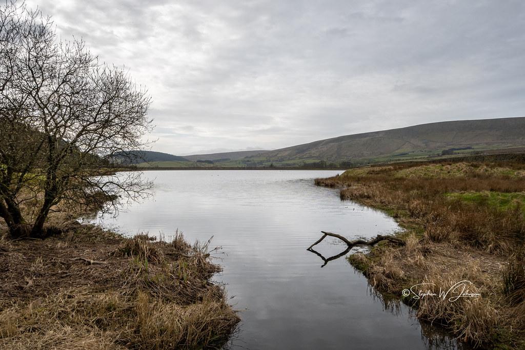Z50_4657 - Upper Black Moss Reservoir, Barley