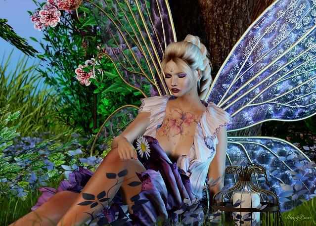 Fairy Nap