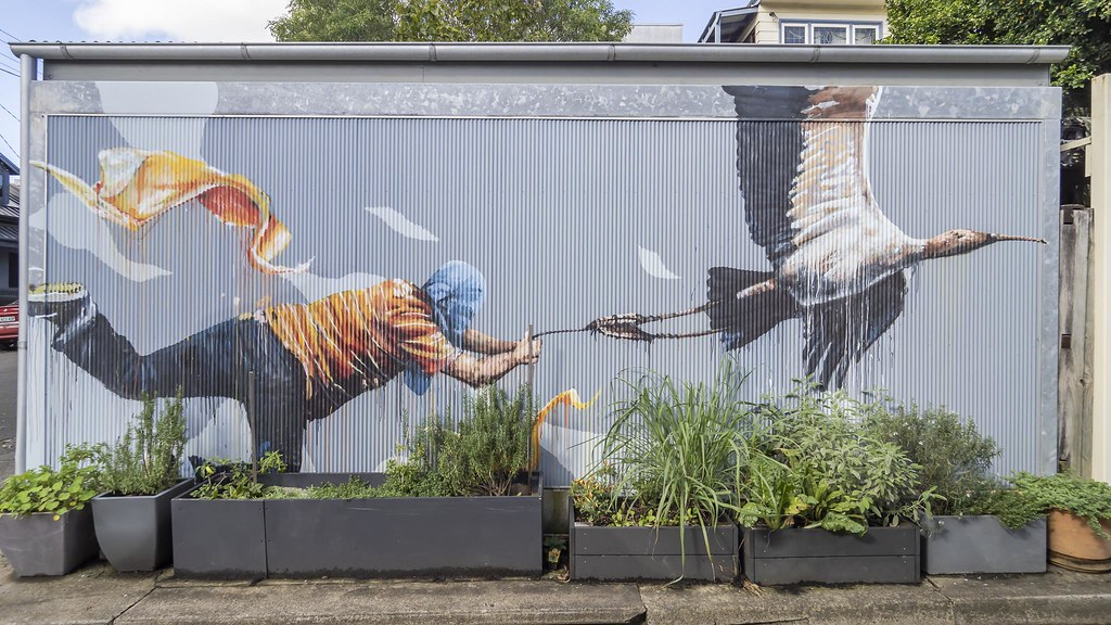 "Fintan Magee's ""Discovering Flight"""