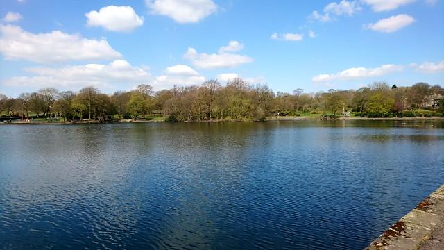 Harold Park