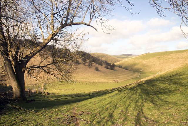 holm dale east yorkshire wolds