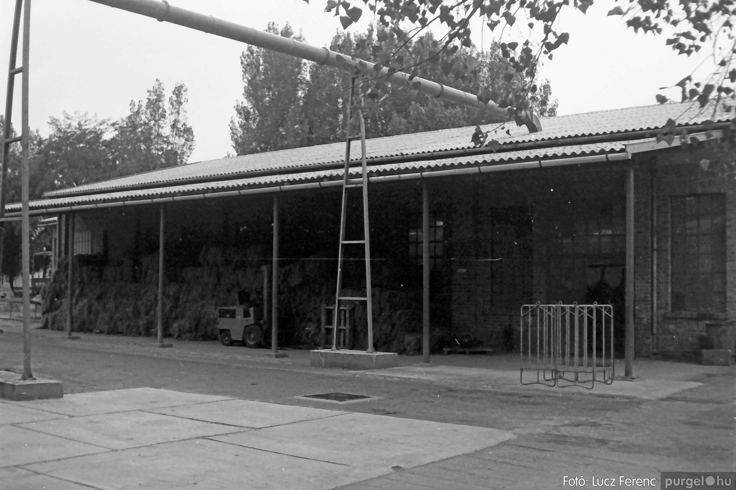 088A. 1977. Nyugdíjas találkozó a Kendergyárban 014. - Fotó: Lucz Ferenc.jpg