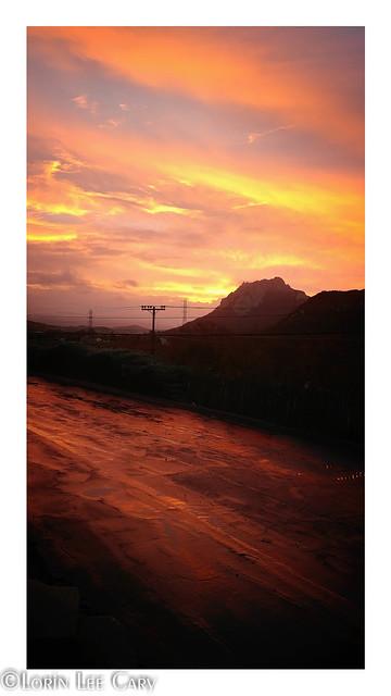 Golden Sunrise 2019: wired landscape series