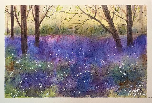 Watercolour Gardener - Mystic Bluebell flowers field
