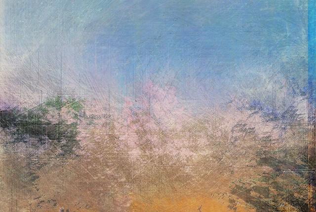 Spring XI Digitized