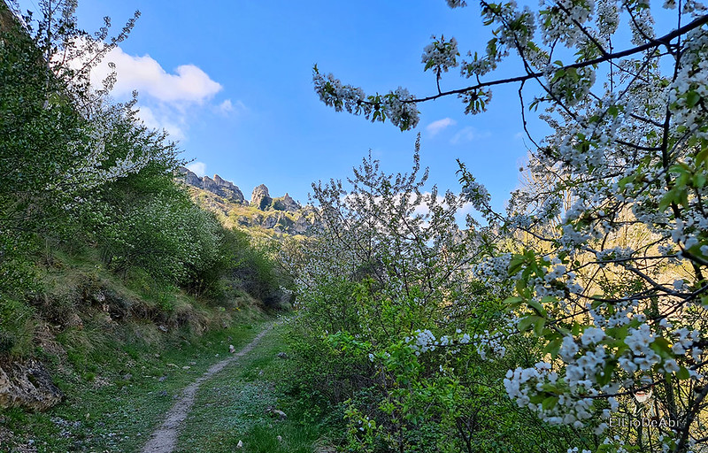 Camino de Santiago, Vía de Bayona en el desfiladero de Pancorbo (8)