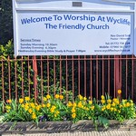 Spring colour at Wycliffe Memorial Evangelical Church