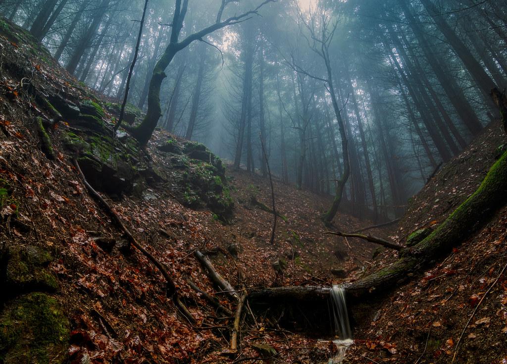 Misty Stream 2