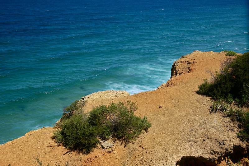 Cliff top, ANZAC Walk, Newcastle