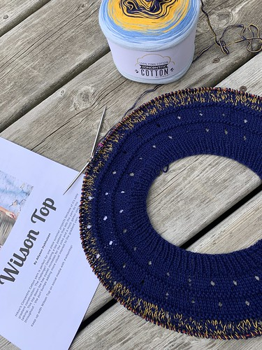 I cast on the Wilson Top by Allyson Dykhuizen yesterday using Hikoo Concentric Cotton in Nautical.