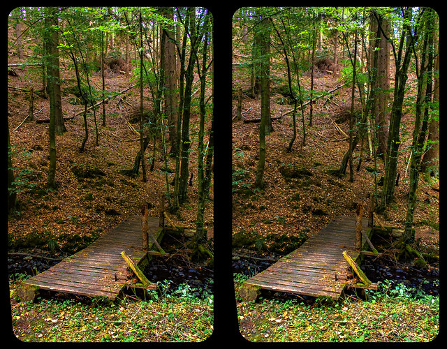 Wooden bridge 3-D / CrossView / Stereoscopy