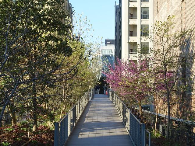 202104113 New York City Chelsea High Line
