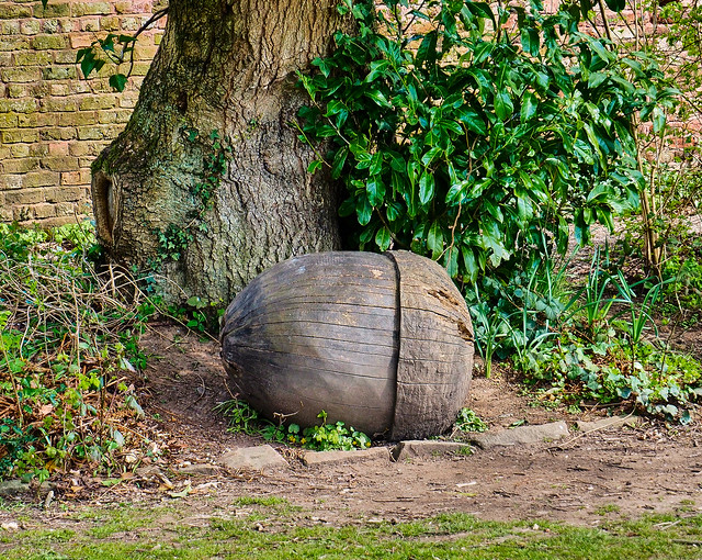 Must be some big squirrels in Chadkirk judging by the size of the Acorn!