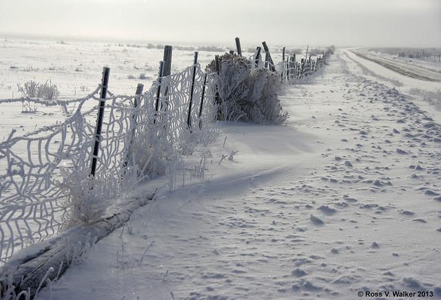 Freezing fog fence