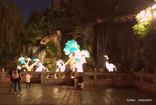 「龍山寺」---龍鳳呈祥、魚躍龍門、仙鶴金牛祈福,恭祝觀世音菩薩聖誕。