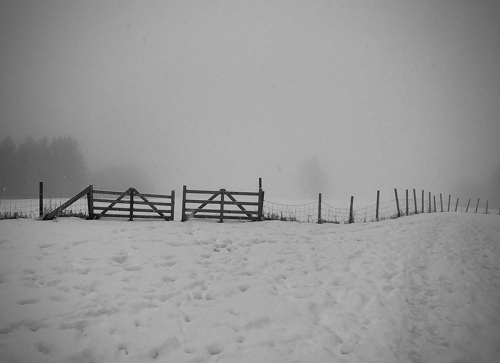 Gateway to foggy landscape