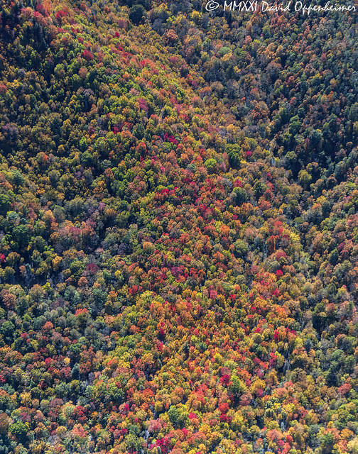 Autumn Peak Colors at Grandfather Mountain State Park Aerial View