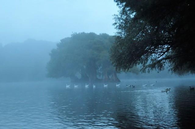 En ocasiones, como el cielo, estamos grises; y con ganas de llover...