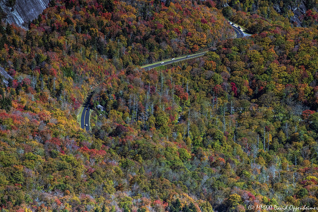 Blue Ridge Parkway Along Grandfather Mountain with Peak Autumn Colors Aerial View