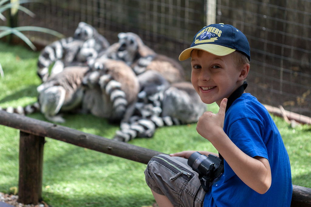 Lemurs Get a Thumbs Up - _TNY_9189