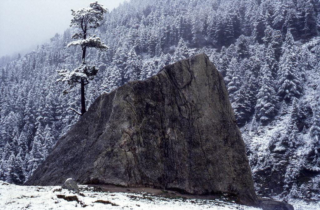 Nevicata di fine estate (settembre 1984)