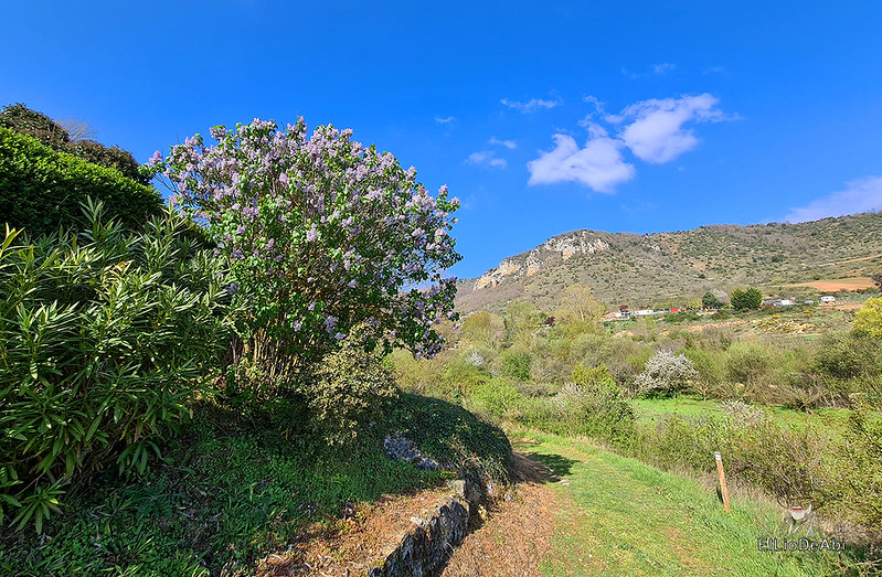 Camino de Santiago, Vía de Bayona en el desfiladero de Pancorbo (4)