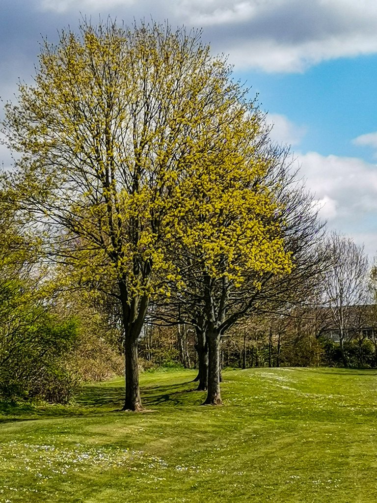 Burntwood, Staffordshire, England