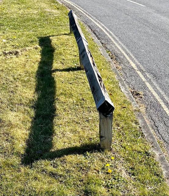 Fence 107/365 (7/2299)