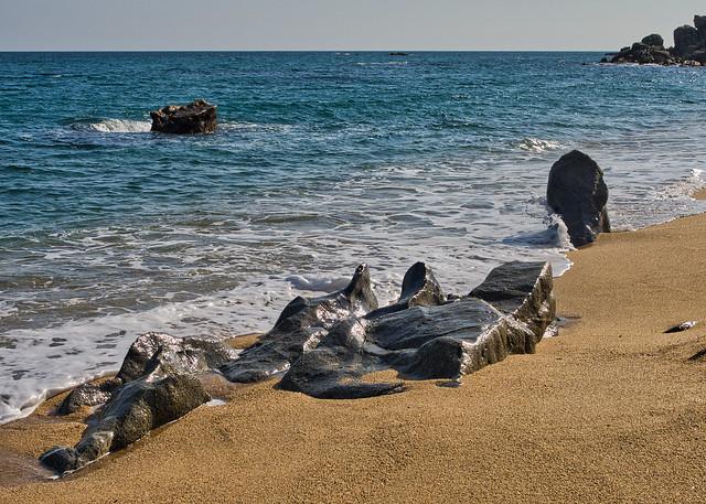 Foques de pedra - Stone seals
