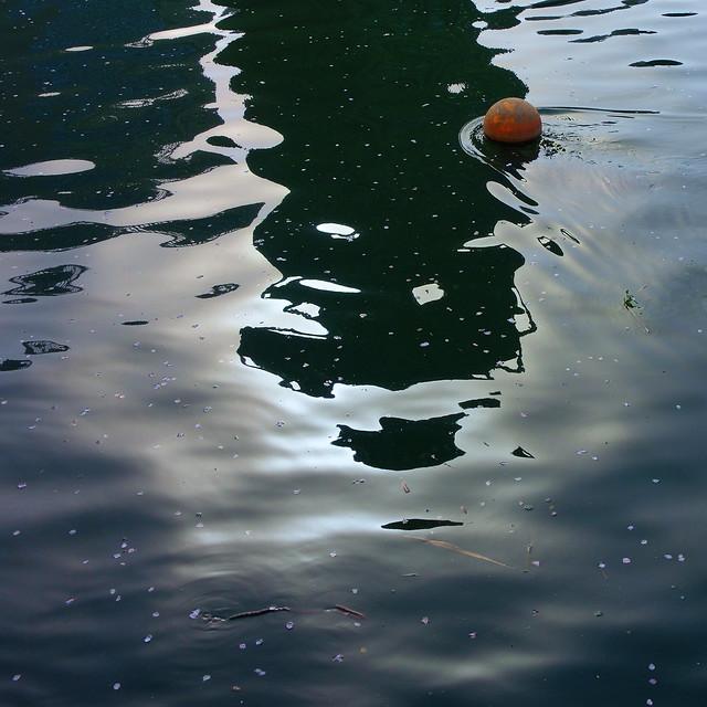水様=Appearance of water-225/Waves with cherry blossom petals