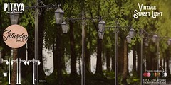 Pitaya - Vintage Street Light AD TSS
