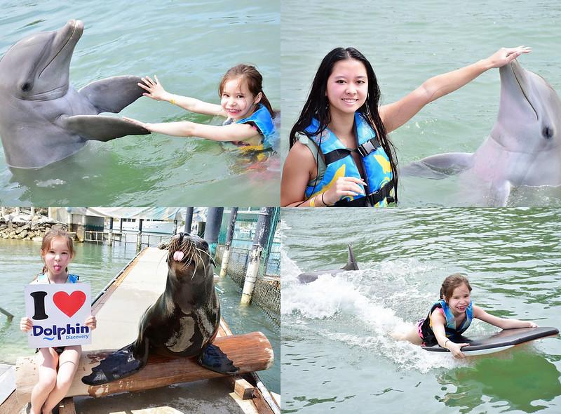 SwimWithDolphins_SydneysFashionDiary (1)