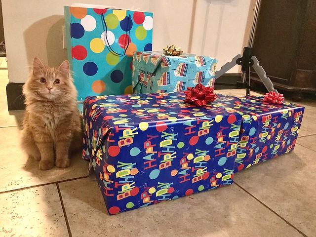 Copper presents the Presents!