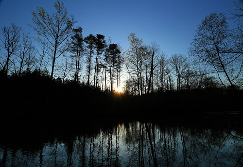 pretty morning rise sunrise star starlight londonontario darrellcolby