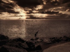 "New Horizons 70 ""Sepia Seascape"""