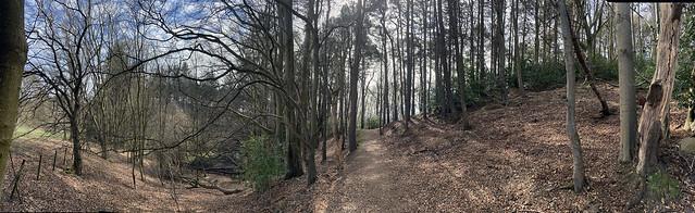 near allan park