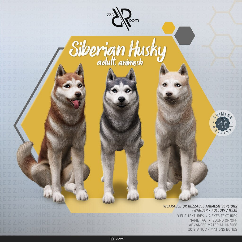 [REZZ ROOM]  Siberian Husky Animesh (Companion)