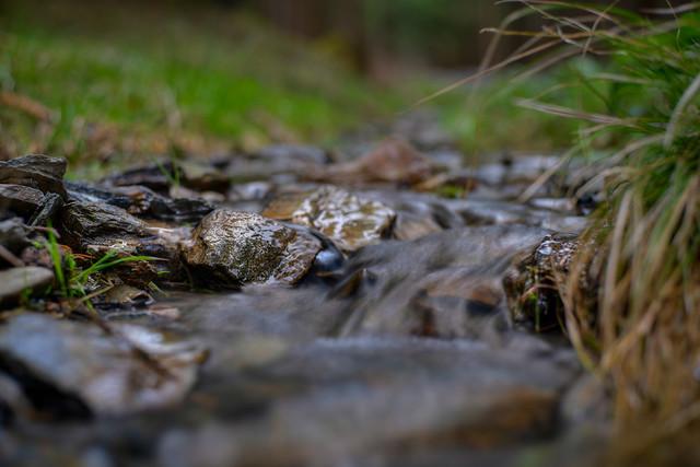 still water flowing, Taunus