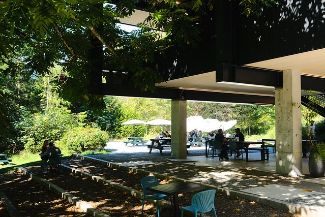 Fergie's Cafe | Sunwolf Riverside Resort | Brackendale, BC