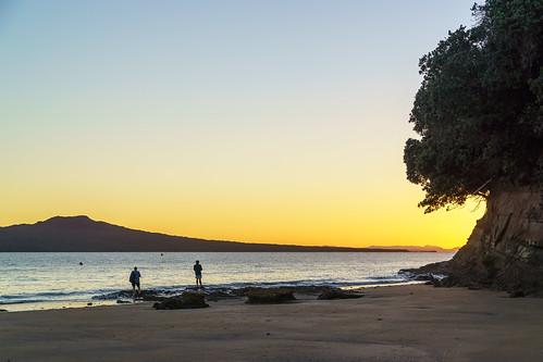 auckland haurakigulf nz newzealand northshore rangitotoisland takapunabeach calm earlymorning still sunrise