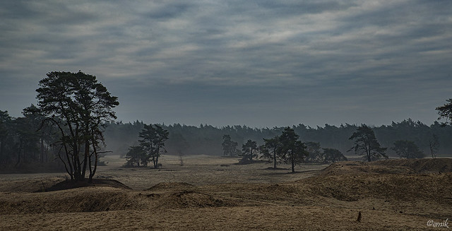 Ommen-Junne (NL) - De Sahara
