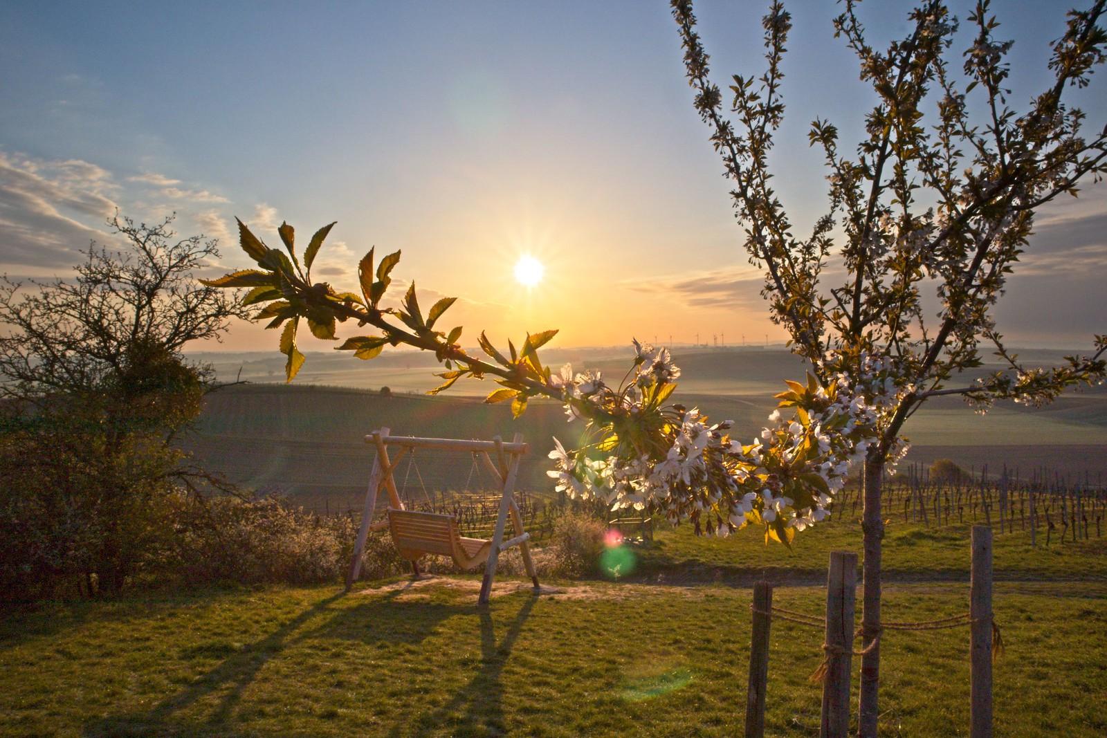 Morgendliche Frühlingssonne über der Schaukel am Petersberg (Canon EOS M50, EF-M 15-45mm f/3.5-6.3 IS STM, 45 mm, Zeitautomatik, 1/200 sek @ f/22, ISO 100, EV -0,67)