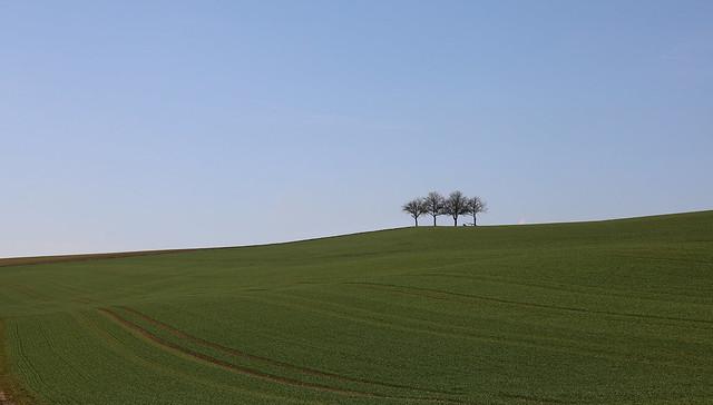 Zerstreuung auf dem Lande · Recreation in the country