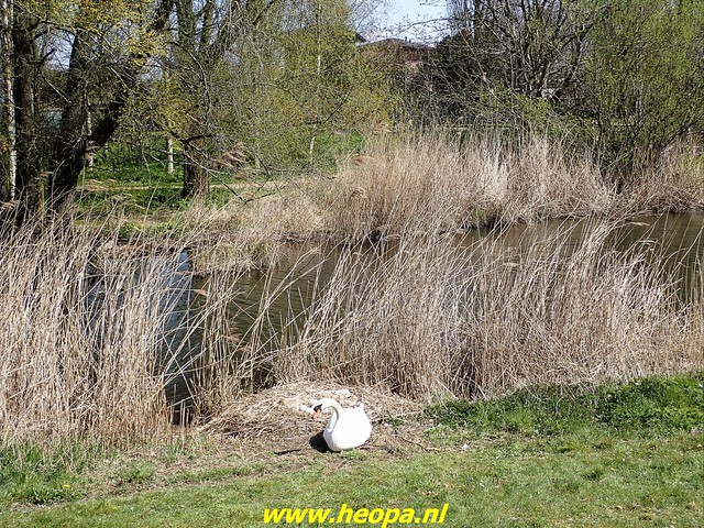2021-04-17 Almere bolleveld 28 Km  (58)