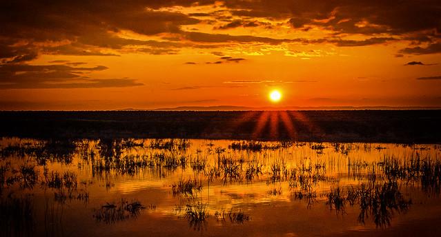 Malhuer Sunset