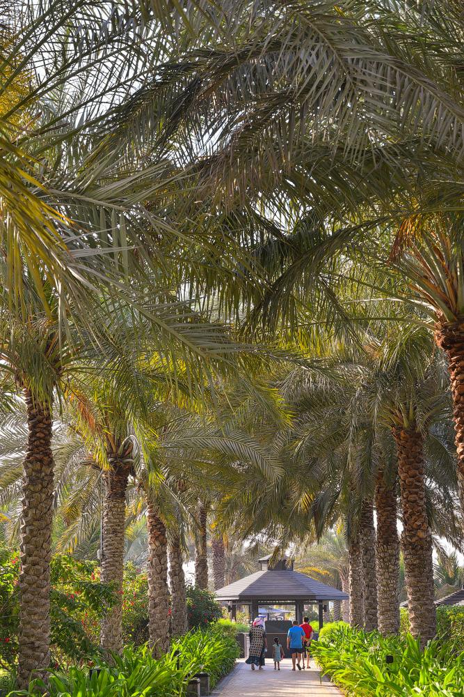 Dubai-Thesisen-(47)