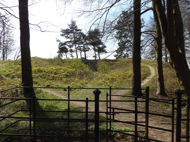 Scutchamer Knob on the Ridgeway, near East Hendred, Oxfordshire, 18 April 2021
