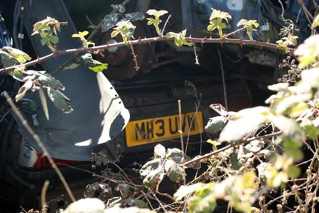 M113 UVW