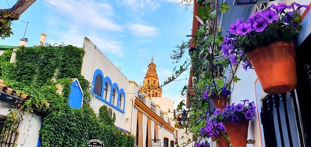 Córdoba, 18 de abril de 2021.